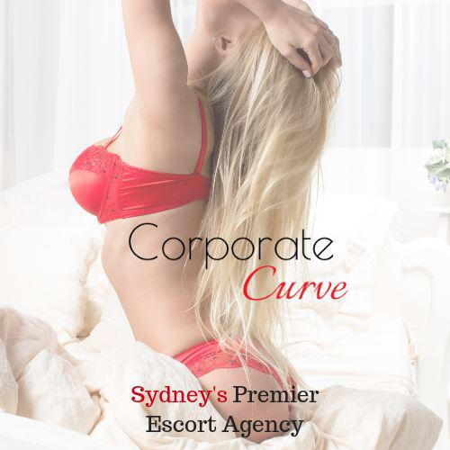 Corporate Curve - Your pleasure is our privilege