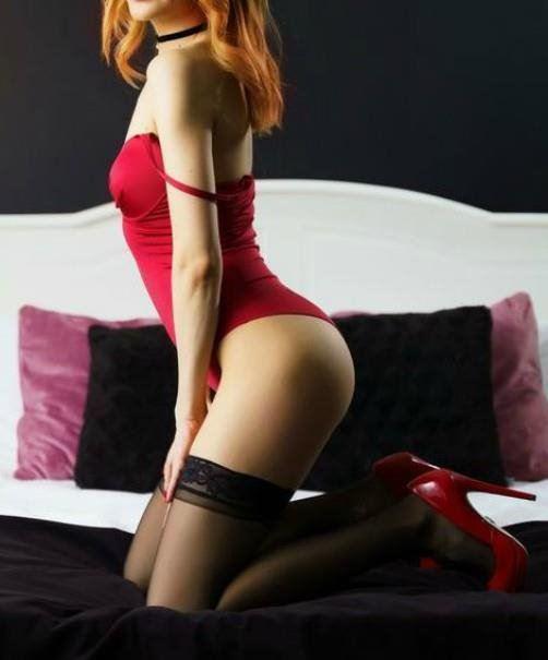 Scarlet -Jinx - Lia - Bella - Stella - Rosa 0487 977 707